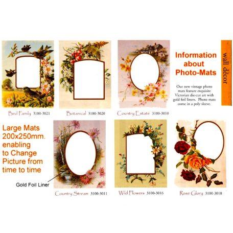 3341 Large Photo-Mat Info