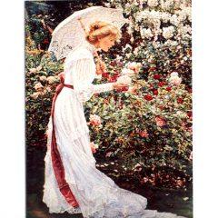 5100 0361 Hidden Garden by Sandra Kuck