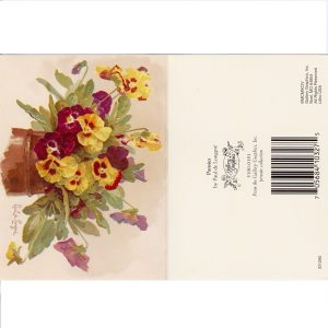 6420 0005 Gift Wrap: Pansies