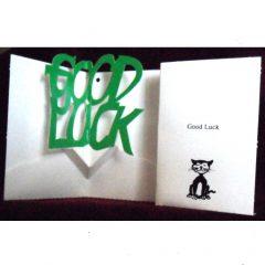 PU08 Good Luck